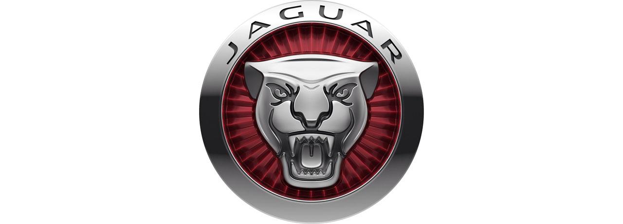 Jaguar Cars BIG LOGO